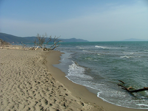 marina_di_alberese_beach539